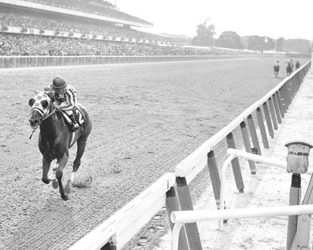Secretariat - 1973 Belmont Stakes - one of the best photos ever taken!