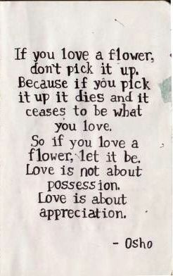 Love Is Not About Possession Love Is About Appreciation Worth
