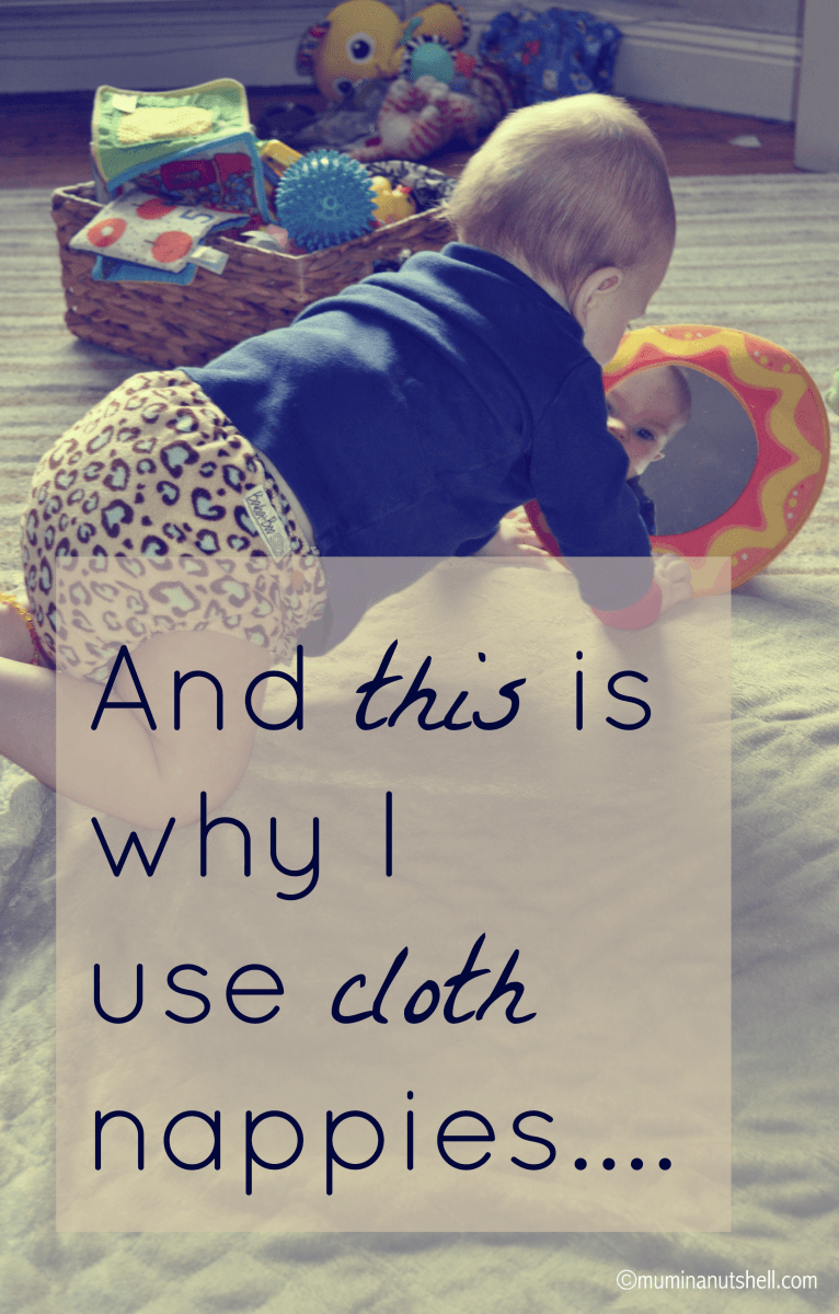 Cloth or real nappies have come along way since the days of terry nappies and safety pins. Here's a detailed look at 2 popular cloth nappies on the market.