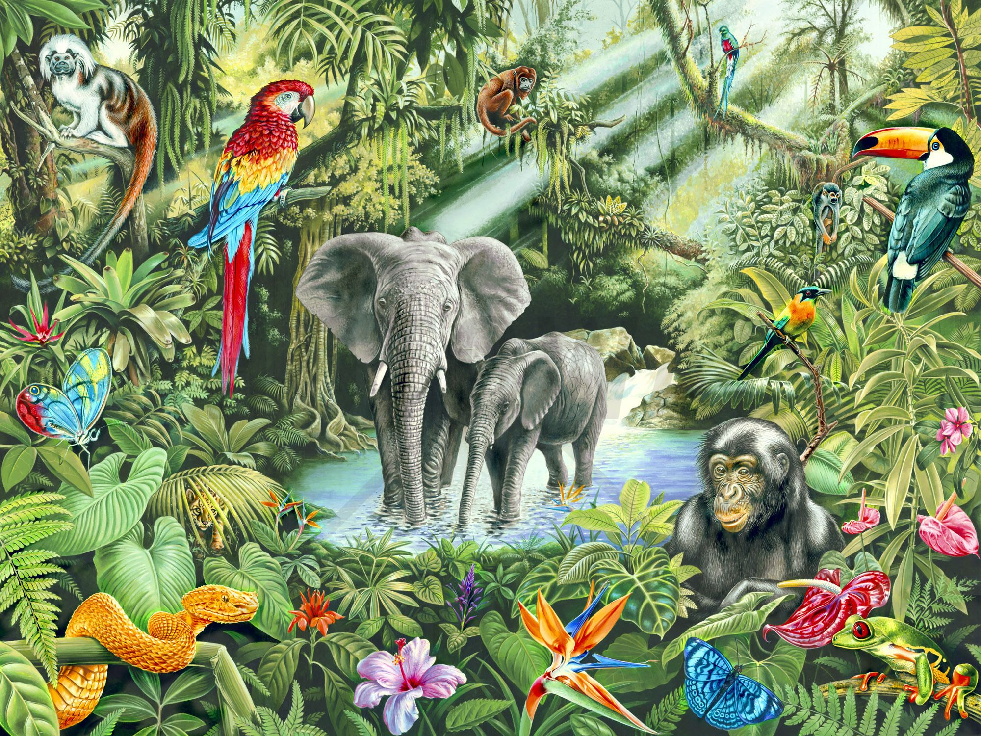 Jungle wall mural photo wallpaper photowall for Animal mural wallpaper