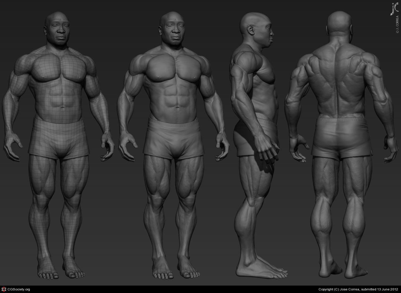 Muscle Anatomy By Jose Correa 3d Cgsociety Sculpt Male