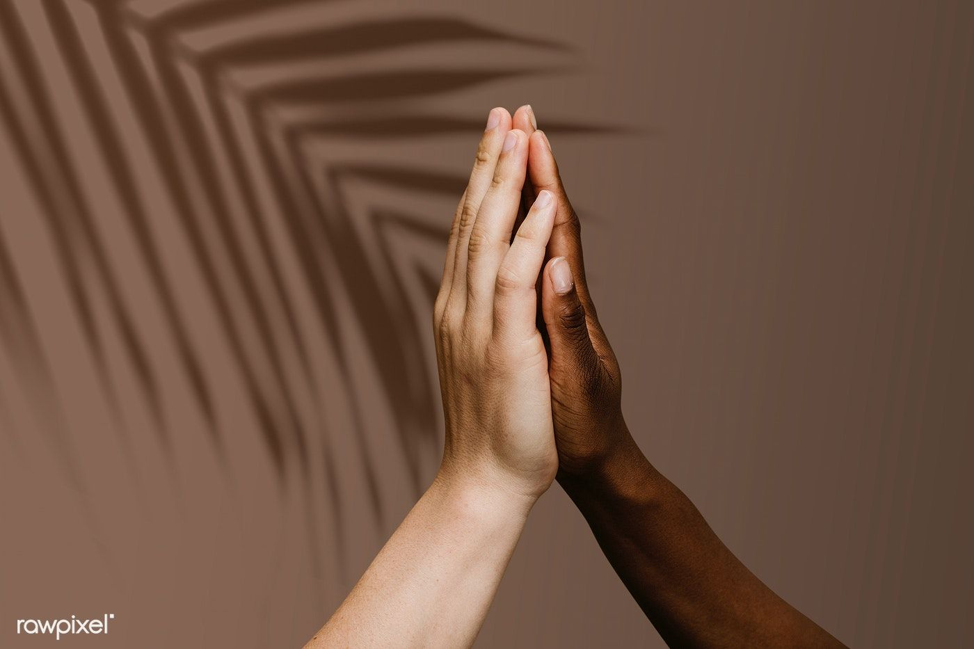 Photo of Download premium psd of Diverse hands giving high five 1203327