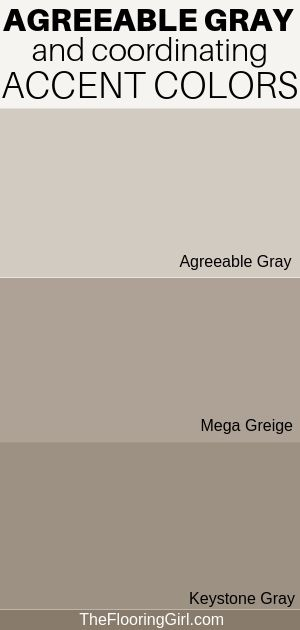 Agreeable Gray, the Ultimate Neutral Greige Paint Color | The Flooring Girl