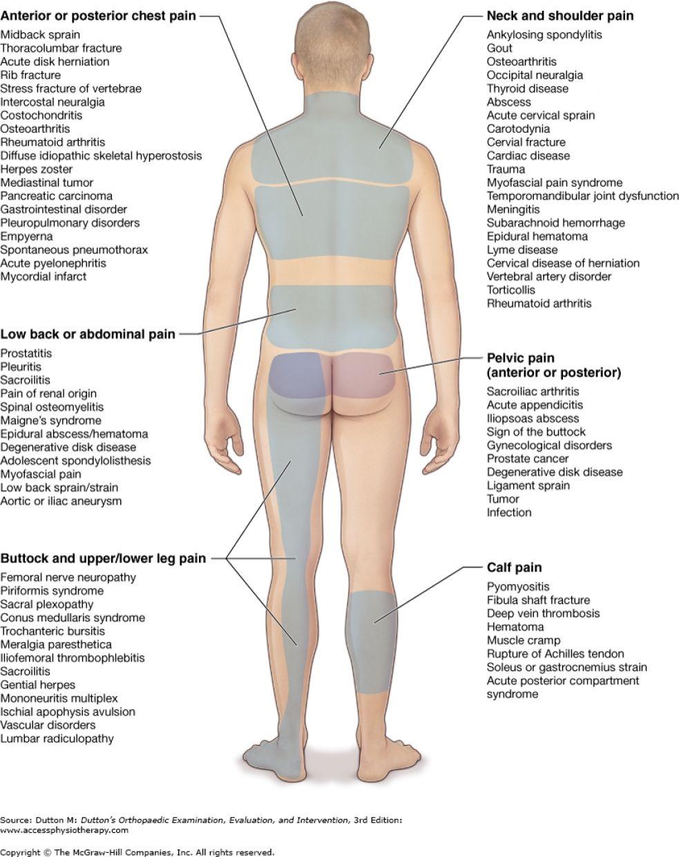 prostate leg pain
