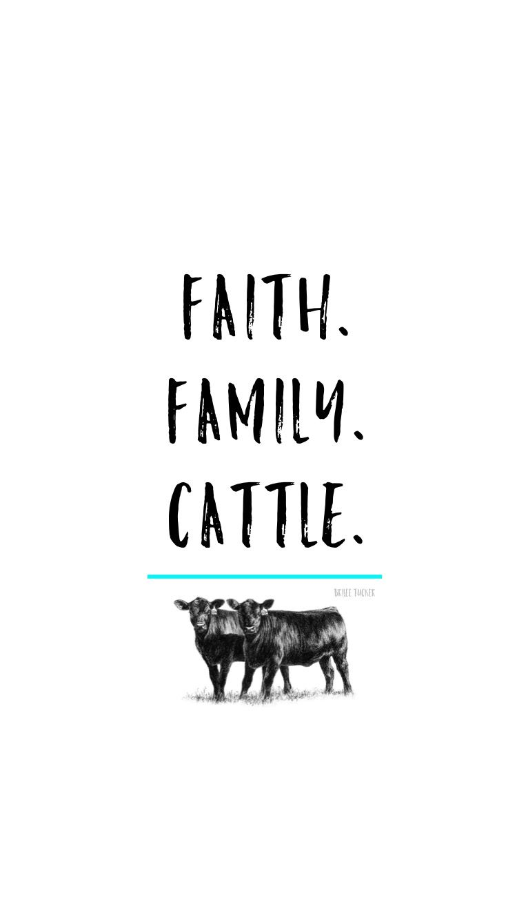 Iphone 6 Wallpaper Faith Family Cattle Angus Cow Livestock Quotes Cattle Cow Quotes