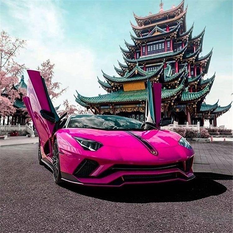 Pink Lambo Pin