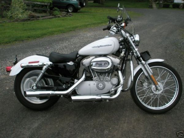 2005 Harley Davidson >> 2005 Harley Davidson Sportster Xl 883 Custom Harley