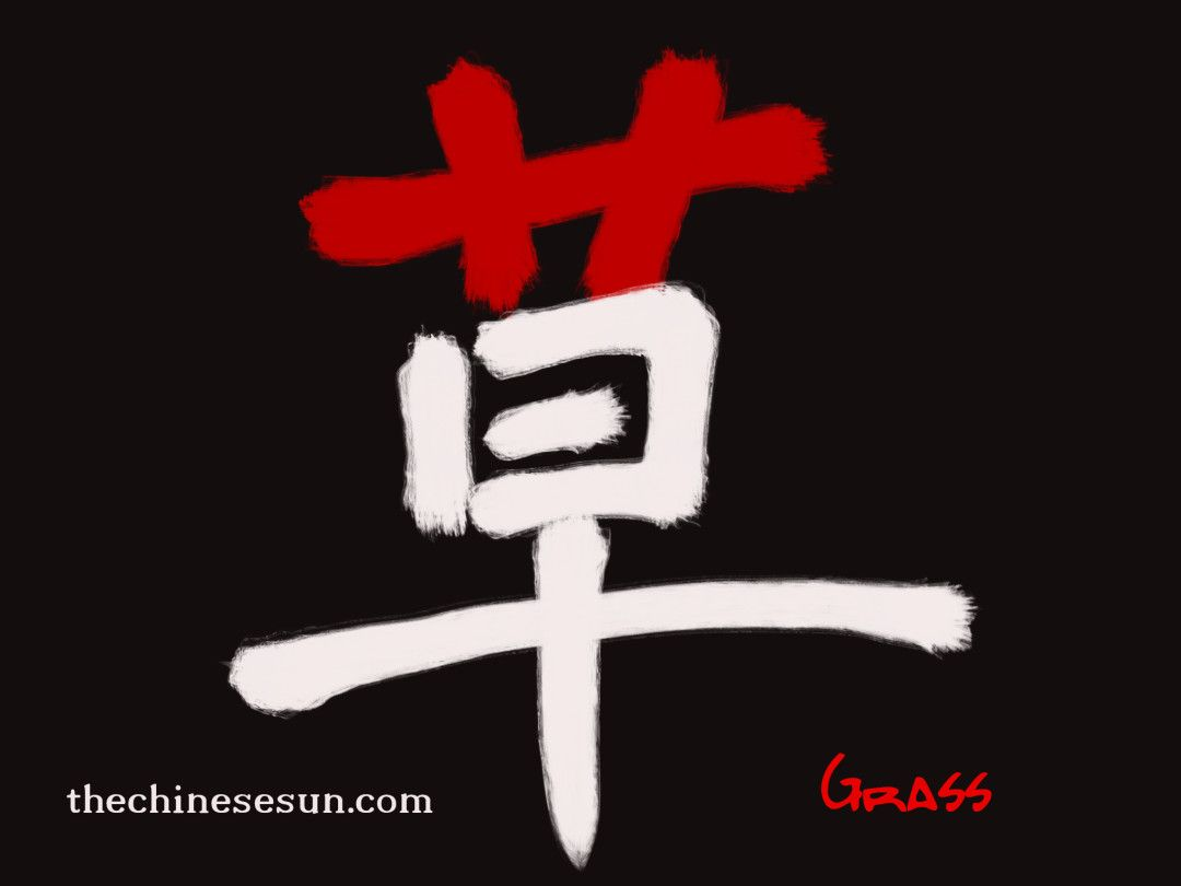Character Character Writing Grass In Chinese Character Symbol