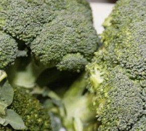 Brokkoli hält die Lunge fit - Neue Studie - Neueste Forschungen haben ergeben, dass ein Brokkoli-Inhaltsstoff dabei hilft, gefährliche Bakterien aus der Lunge zu schwemmen.
