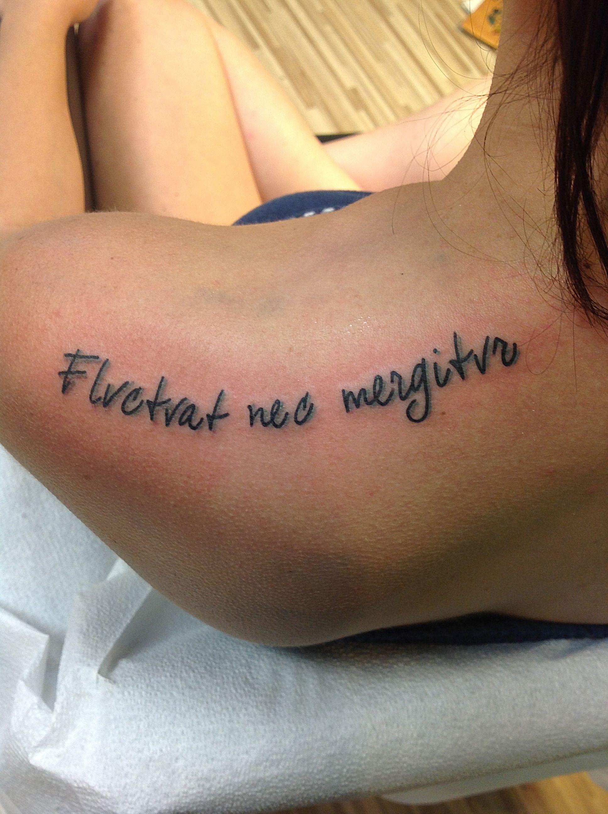 22+ Fluctuat nec mergitur tatouage trends