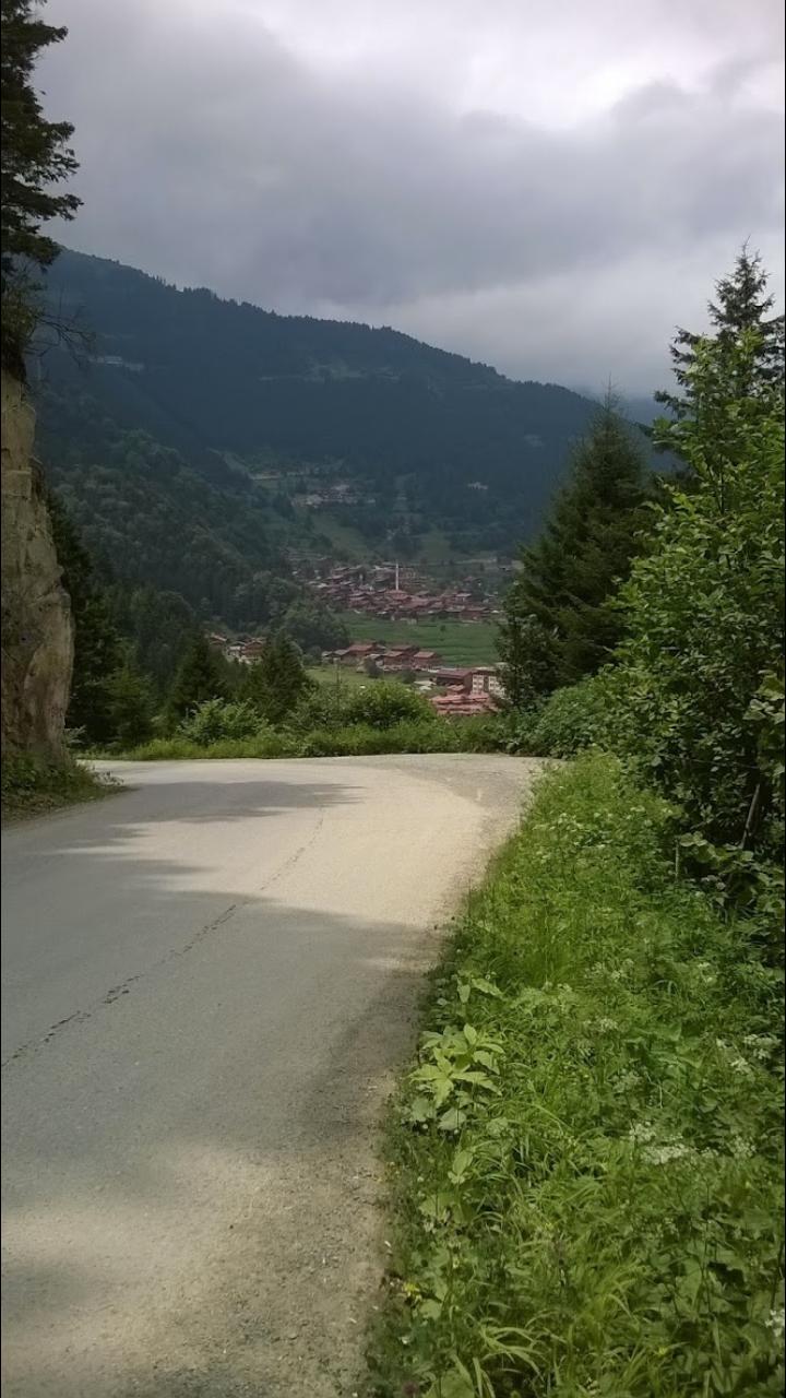Uzungol Trabzon Turkiye Resim Turkiye Cennet