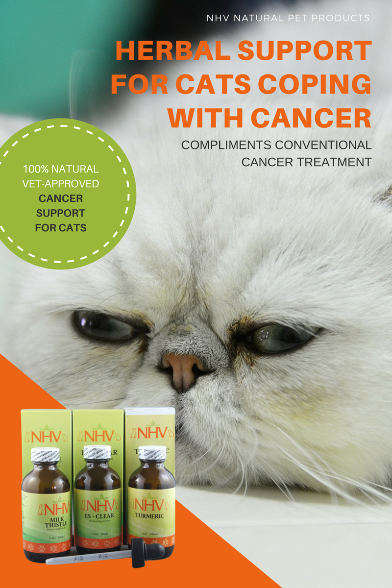 Herbal support for cats coping with cancers of any kind. this natural supplement pack works in conjunction with any conventional cancer treatment like chemo or surgery. These herbal blends help cats fight cancer, tumor growth and cope with the symptoms of cancer, naturally.