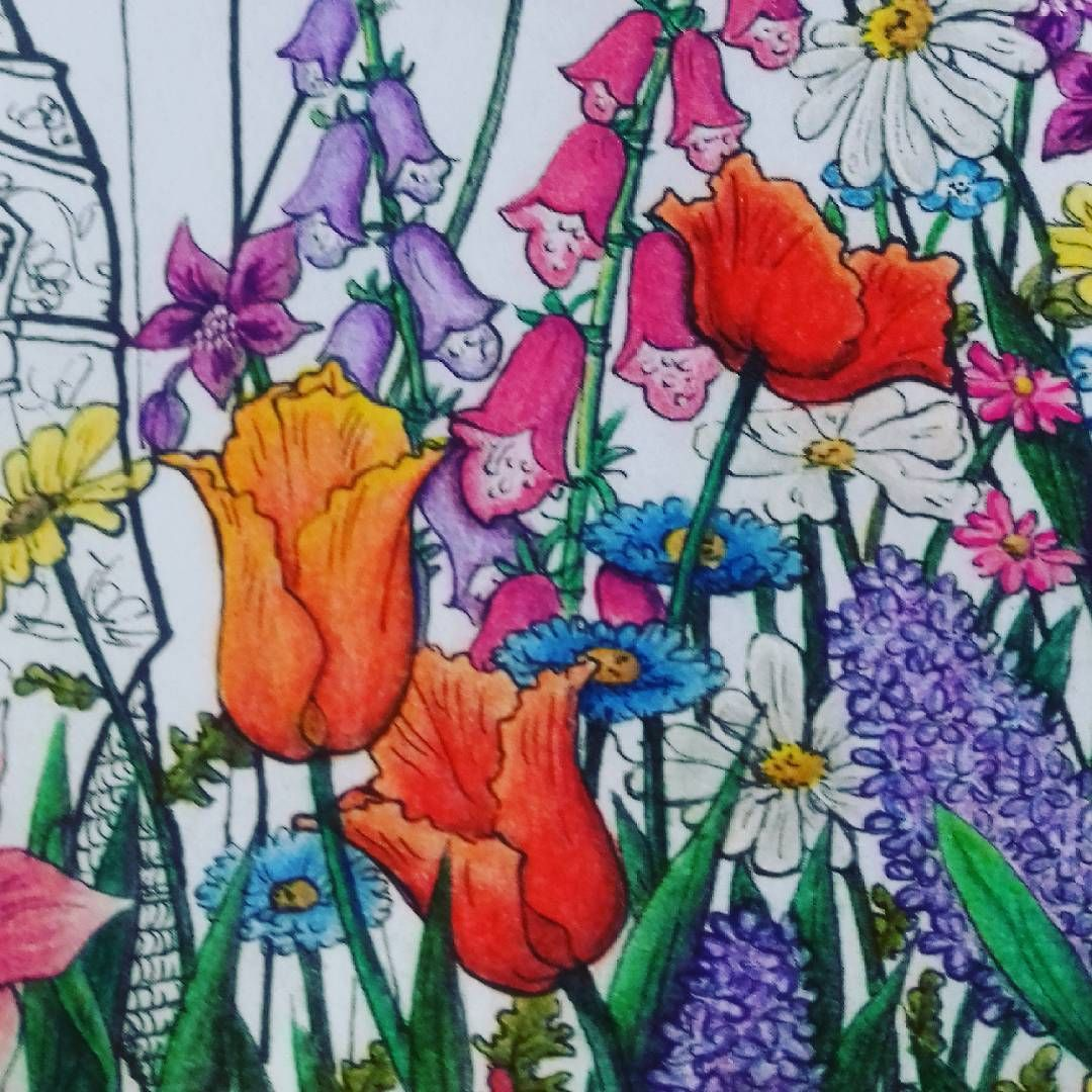 #coloring #flowers / #coloreando #flores 🌺🌻🌼🌷🌿☘🍀🌱🌹🌸 # ...