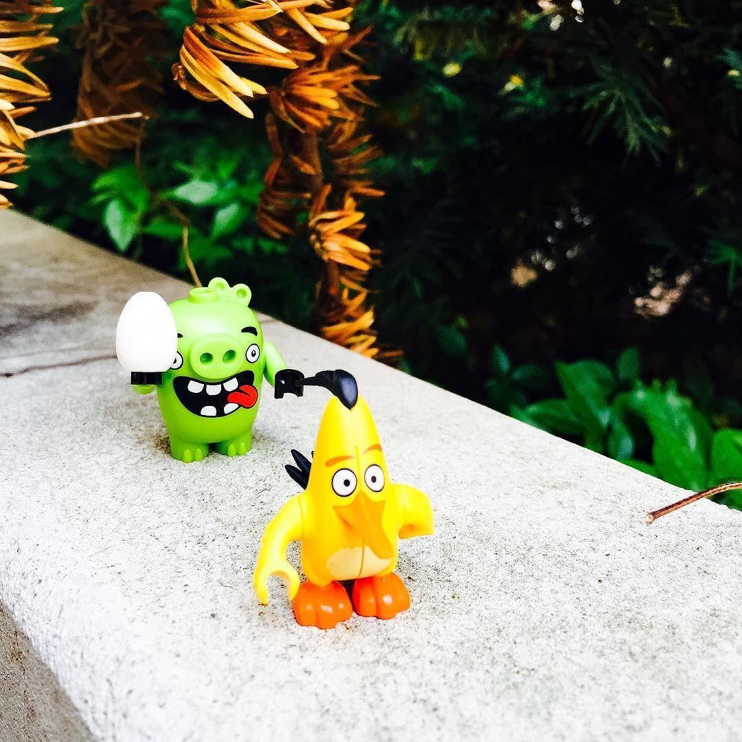 #angrybirds #piggy #chuck #minifigure #lego #legostagram #레고스타그램 #레고미니피규어 #앵그리버드 #앵그리버드더무비 #추적 by foxhoundshin