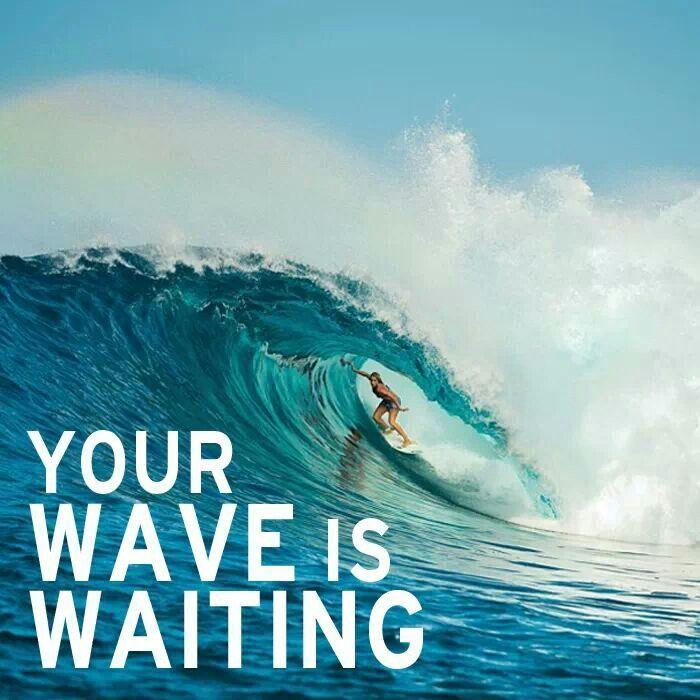 Surfing Quotes Fascinating Tweedle Dee & Tweedle Dum  Sharing Our Wonderland  Sup Vibes