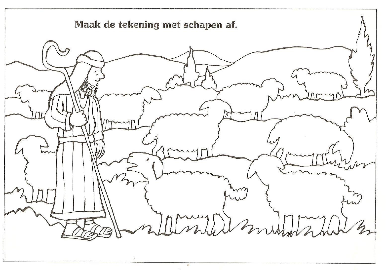 shepherd drawing likeness tekenen herder kleurplaten