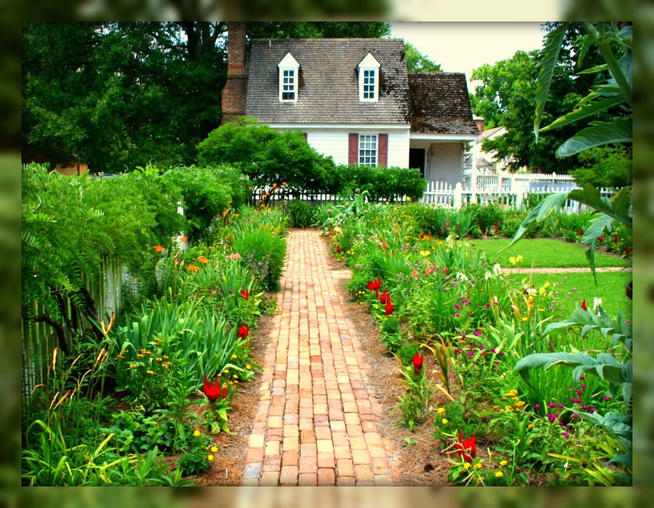Backyard Garden, Colonial Williamsburg, Williamsburg, Virginia