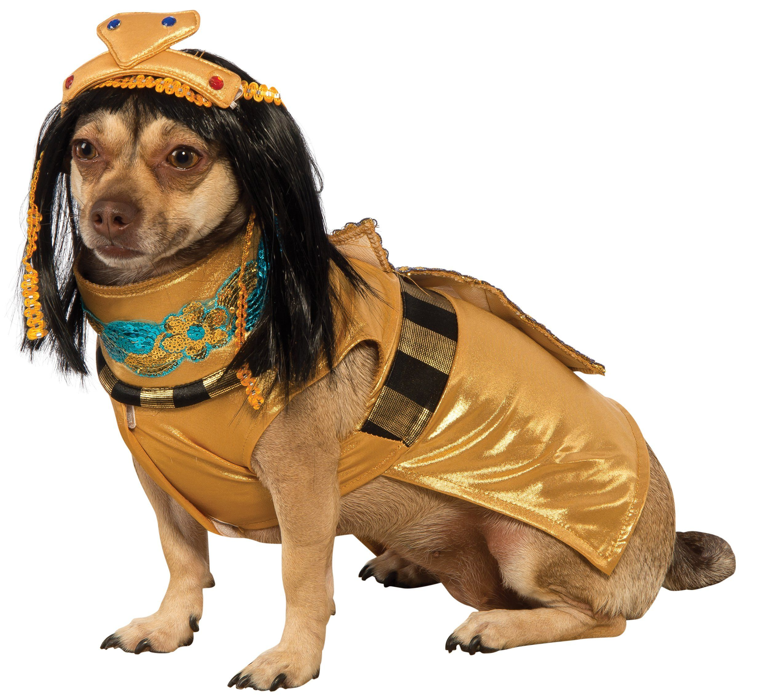 Rubies Cleopatra Pet Costume Small Read More At The Image Link