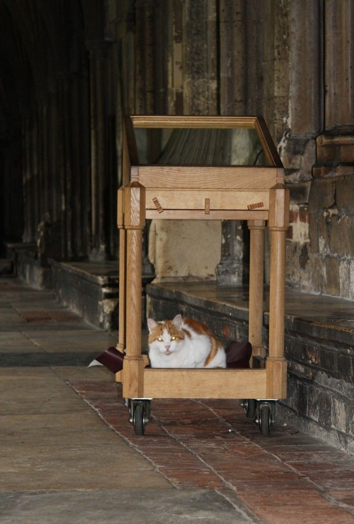 Laptop: Canterbury Cathedral Cat Remembered | Canterbury cathedral, Cats,  Kitten meowing