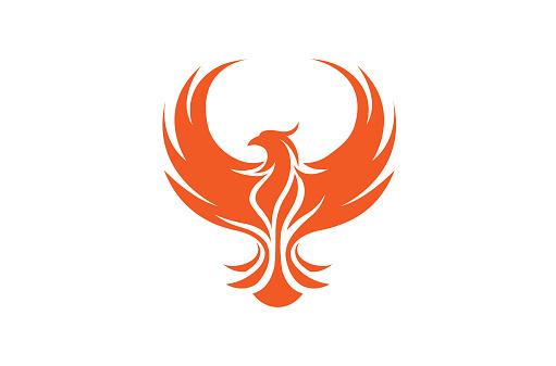 Creative Phoenix Bird Logo Symbol Design Illustration Bird Logos Bird Logo Design Logo Design Art