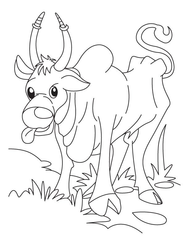 Free Printable Ox searching for corn flakes coloring pages and ...