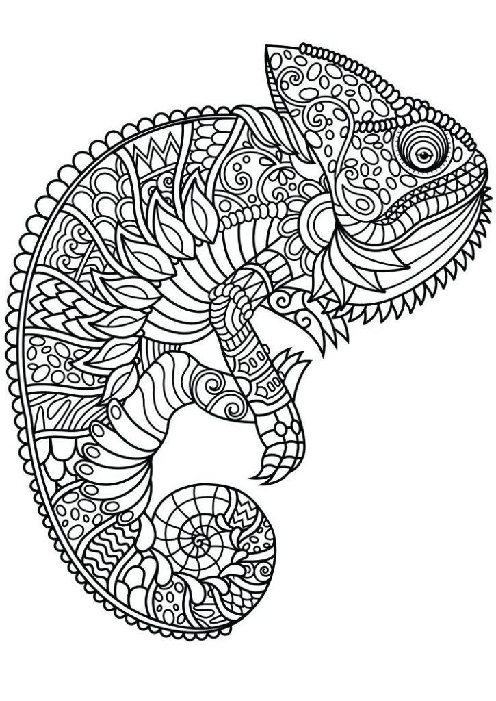 Animal Mandala Coloring Pages Best Coloring Pages For Kids K