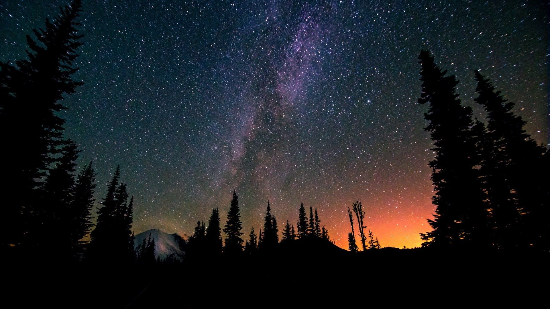 Night Stars Long Exposure Landscape Forest Milky Way Nature Trees Mountains 1080p Wallpaper Hdwallp In 2020 Milky Way Night Sky Stars Long Exposure Landscape