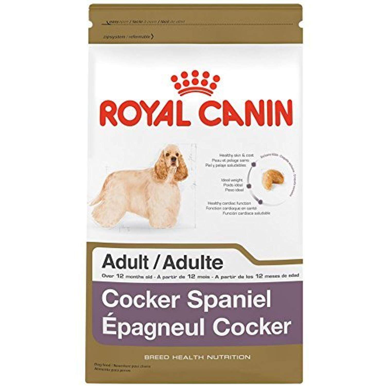Royal canin breed health nutrition cocker spaniel adult