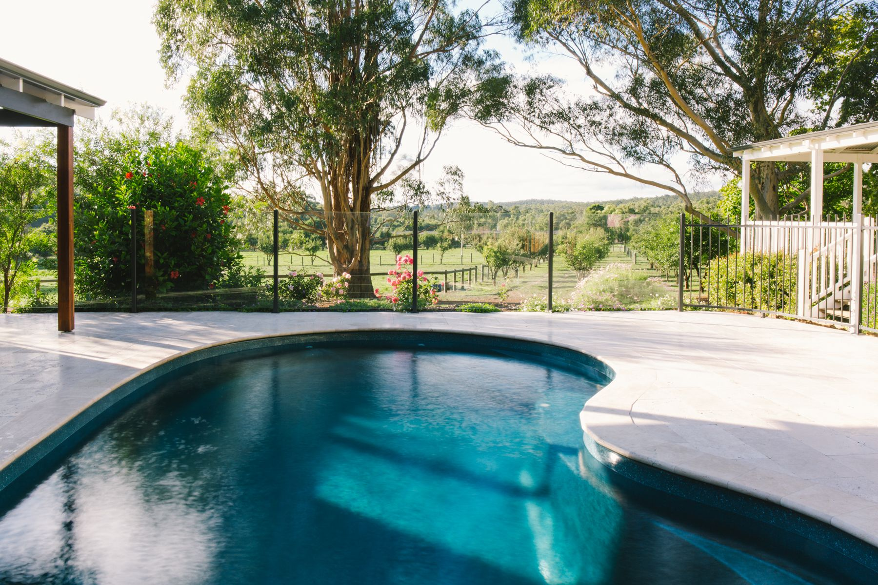 Kidney Or Jellybean Shaped Pools Are The Perfect Shape For An Organic And Rustic Backyard In Deep Blue Aqua Colour Against The Green Pool Spa Pool Pool Colors