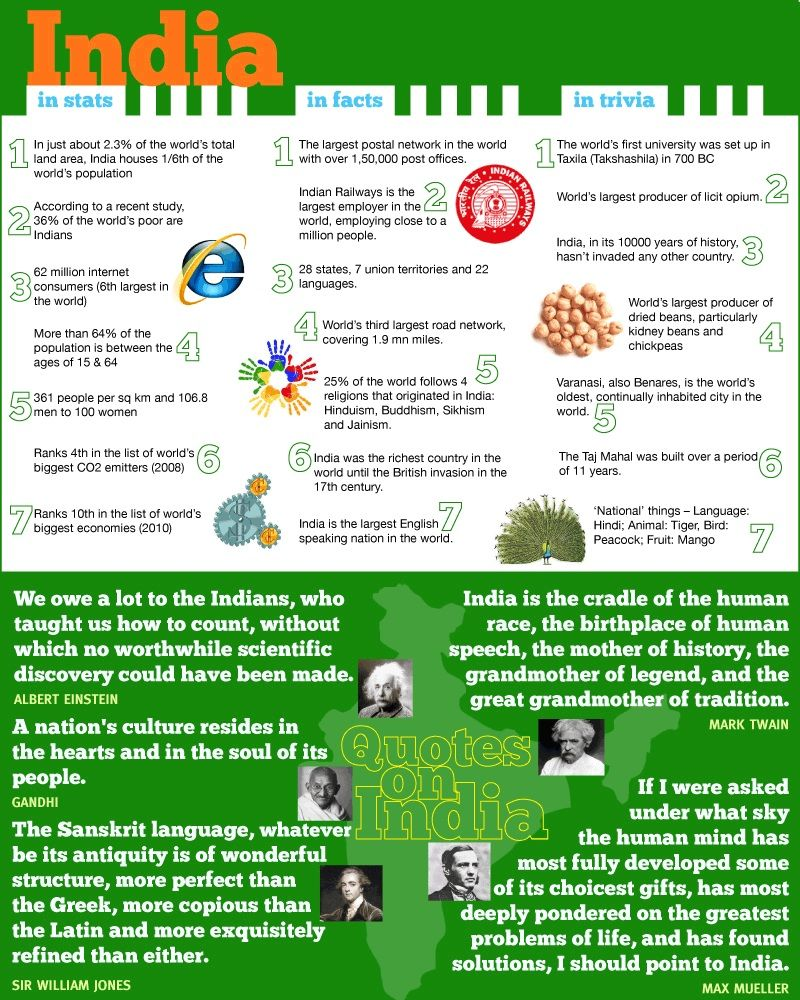Infographic Which Gives You Some Interesting Facts About India - 15 amazing facts about the internet