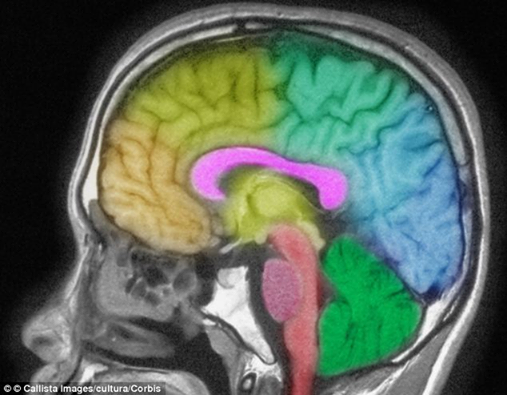 Effects of untreated hearing loss in 2020 | Brain scan ...