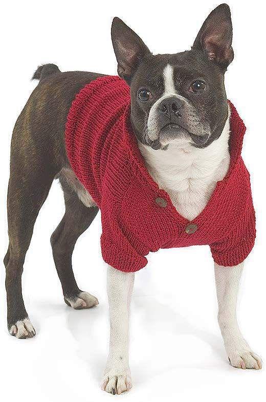 Top 5 Free Dog Sweater Knitting Patterns   Yarn Crafts   Pinterest ...