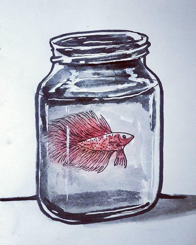 67 Koleksi Gambar Ikan Cupang Sketsa Terbaru