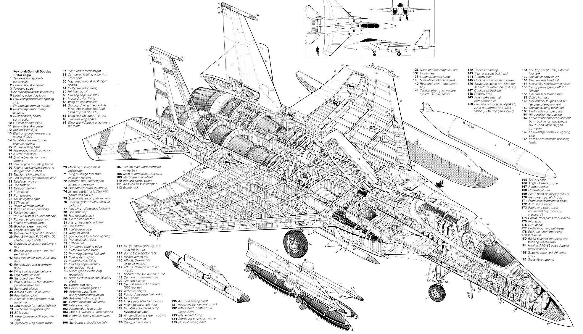 F 15c Labeled Cutaway