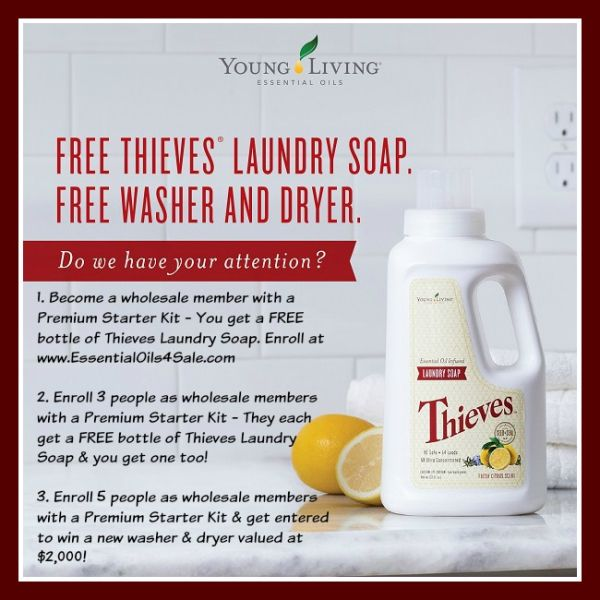 Do You Want A Free Bottle Of Thieves Laundry Soap In September Do