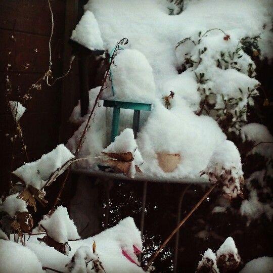 Schnee ❄