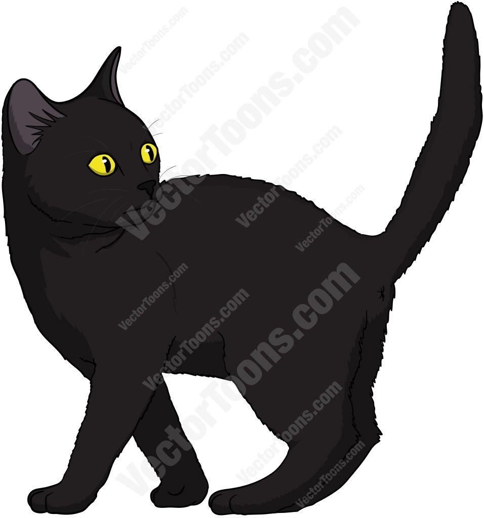 black cat cartoons