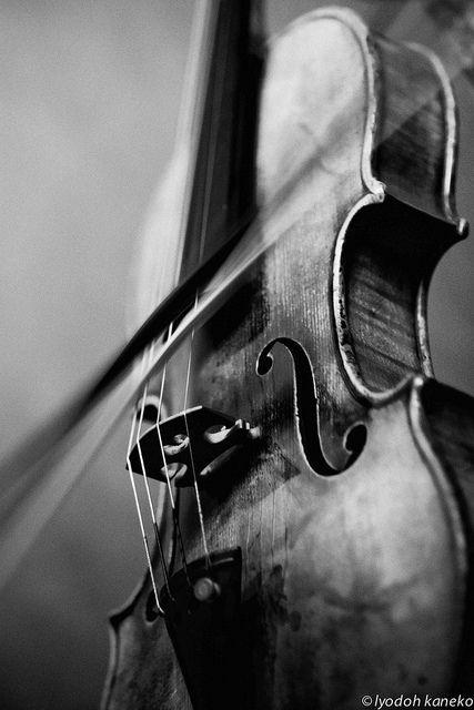 El violin puede ser una buena opcion cuando se tratra de una melodia suave. En ocaciones puede ser molesto. Emite frecuencias muy agudas que en ocaciones puden irritar a algunas personas