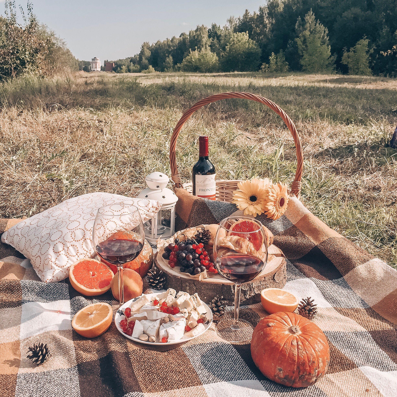 Пикник картинки и фото