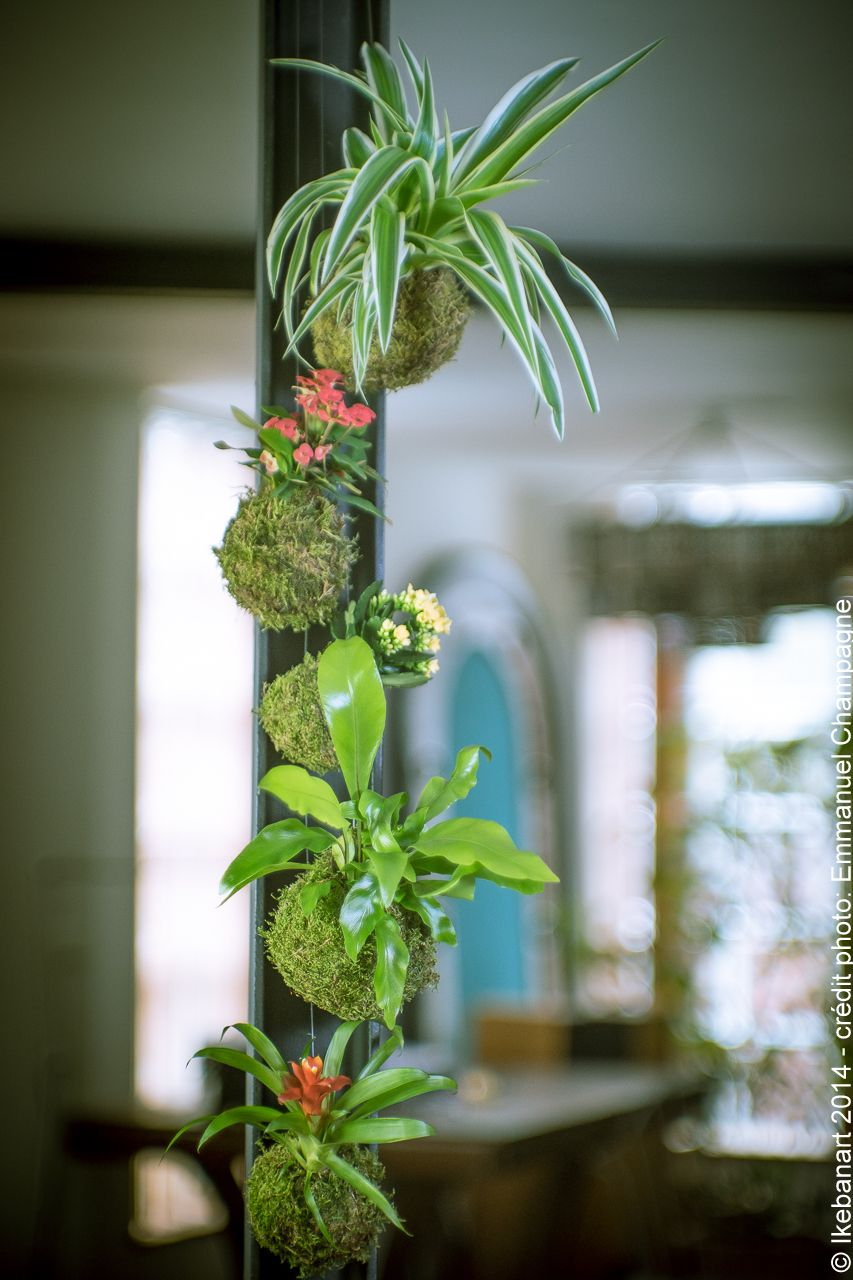 http://www.ikebanart.com/2/post/2014/04/les-jardins-suspendus-dikebanart.html