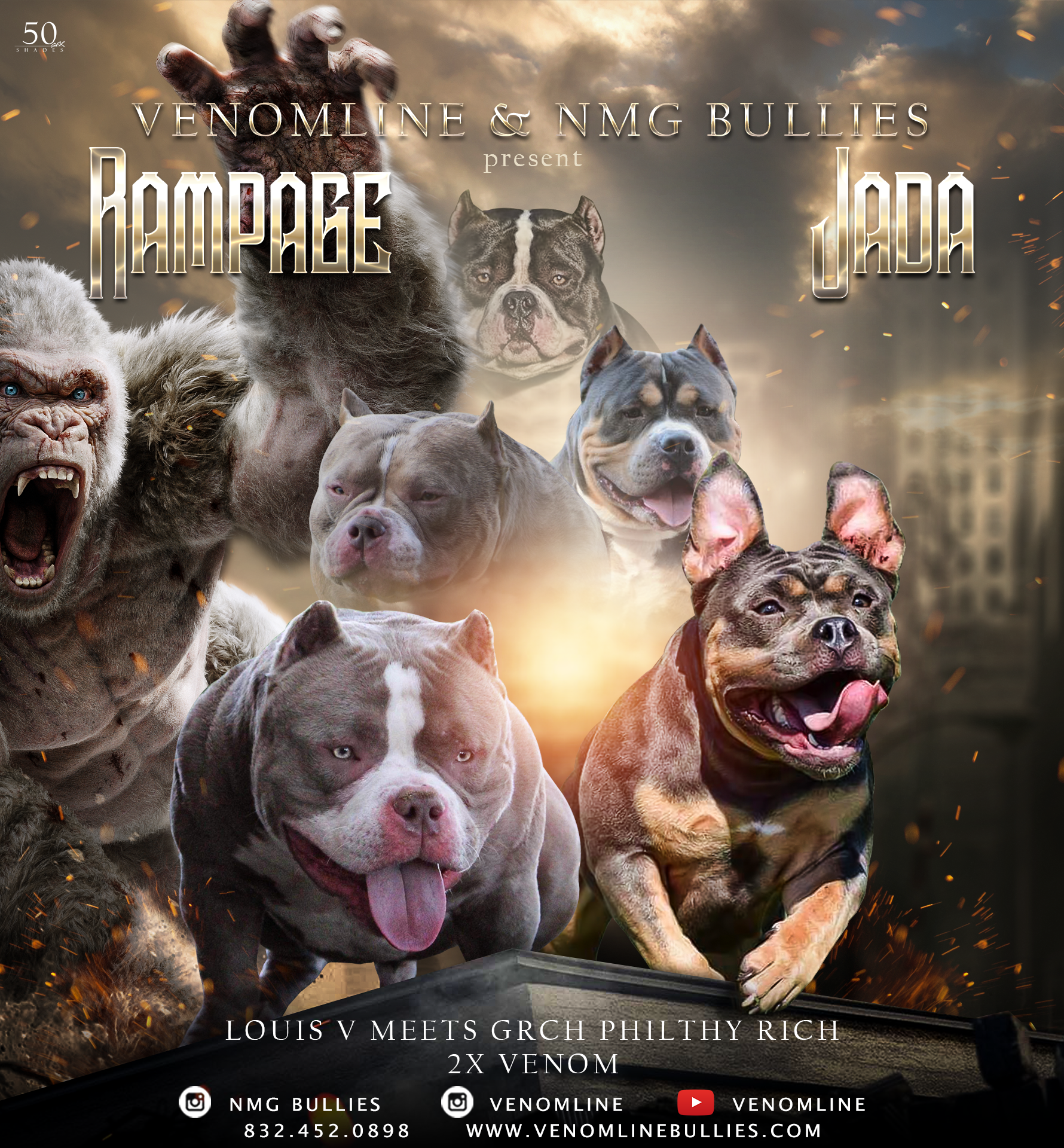Puppies For Sale In 2020 American Bully Kennels American Bully