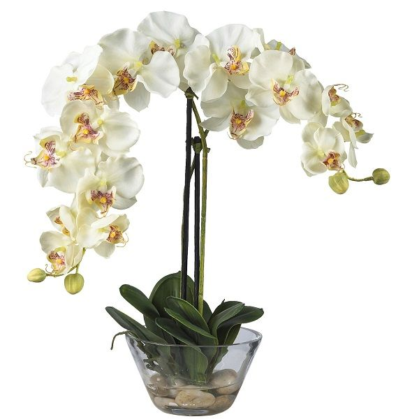 This double white phalaenopsis orchid acrylic water silk flower this double white phalaenopsis orchid acrylic water silk flower arrangement will brighten up any table with mightylinksfo Gallery