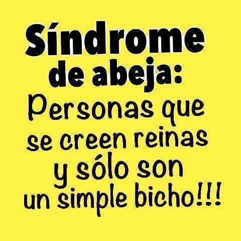 ...y Que Mis Disculpen Los Bichos, Que Son Seres Estupendos :) · Spanish  QuotesSpanish ...