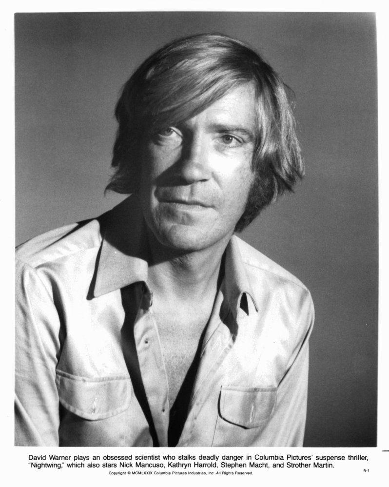 David Warner (born 1941)