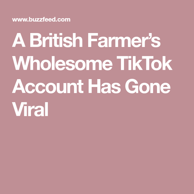 This British Farmer Didn T Know His Wholesome Tiktok Account Was Going Viral Wholesome Viral Farmer