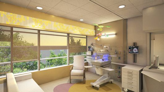 Support our building make a gift giving to golisano - Interior decorators rochester ny ...
