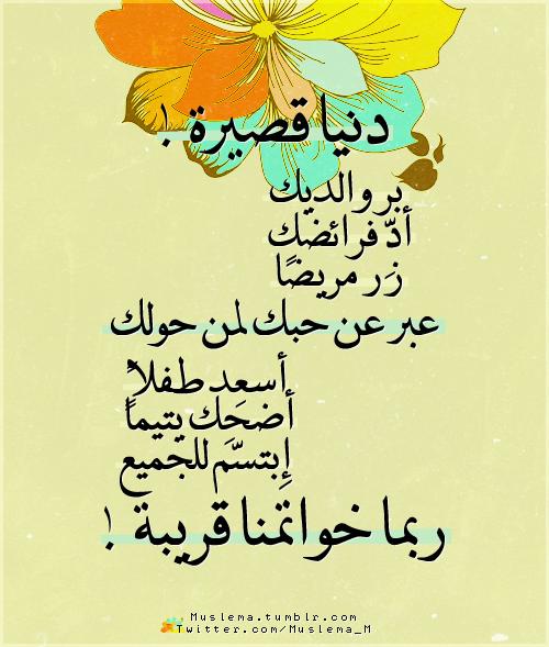 Pin By Sarra Lara On أدعية وعبر قرآنية Special Quotes True Words Words