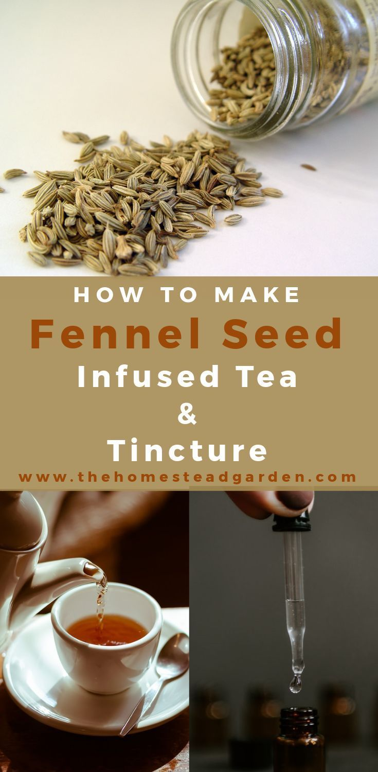 how to prepare fennel seeds