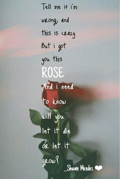 For The First Time Vintage Heart Song Lyric Quote Print