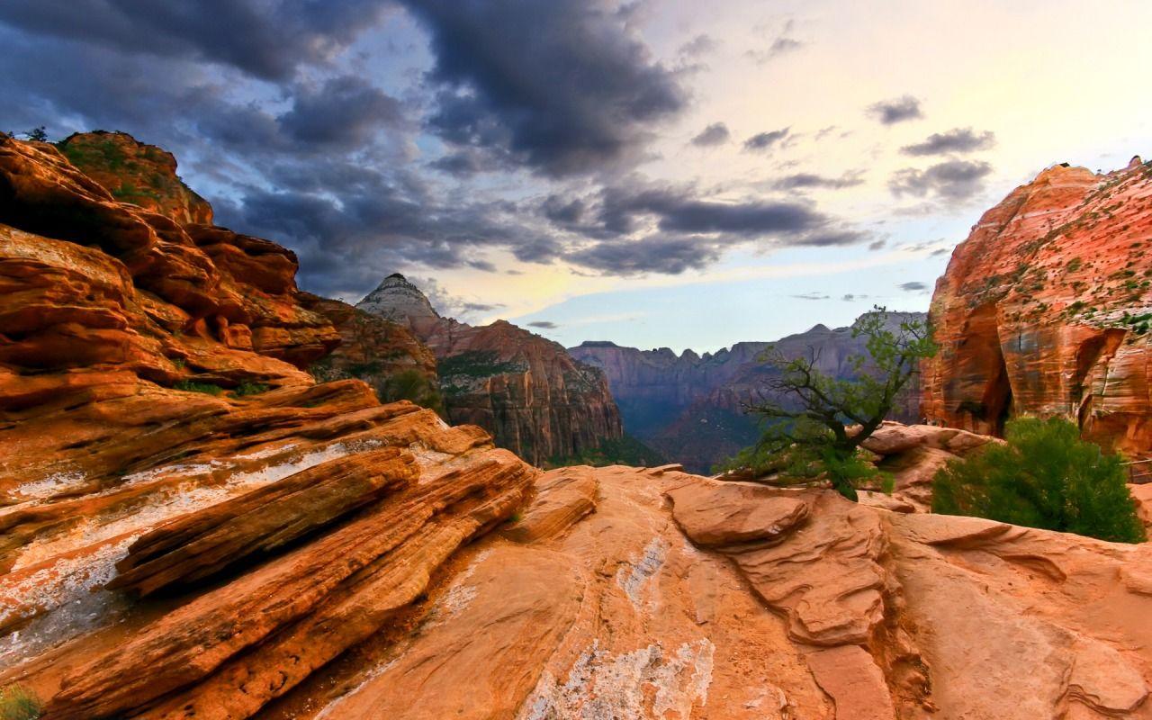 Naturenationalpark Zion National Park Wallpaper